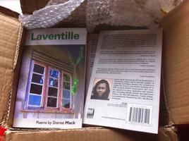laventillebook